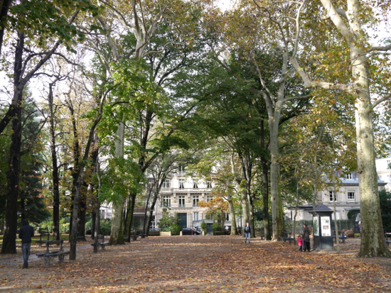 11月公園